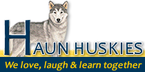 haun_logo_new